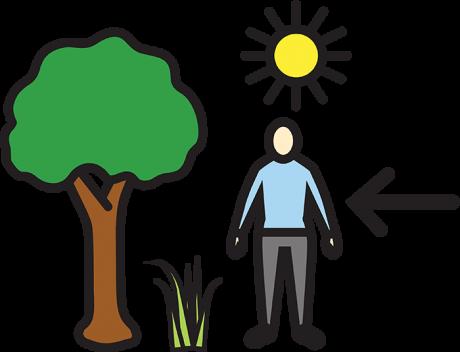 Piiroskuvassa on mies, puu, aurinko ja ruohoa.