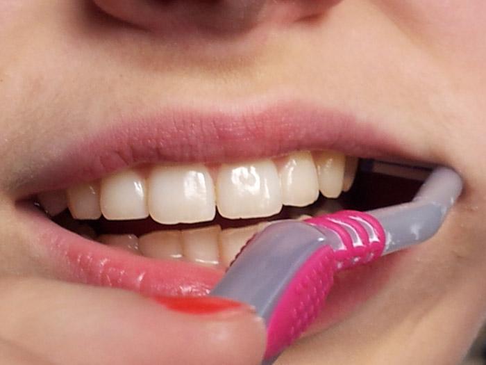 Hampaiden harjaus, ylätakahampaat