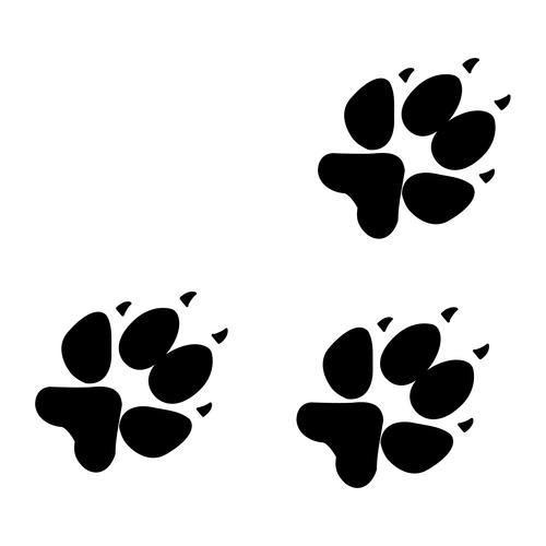 Kuvahaun tulos haulle koiran tassun jäljet kuva