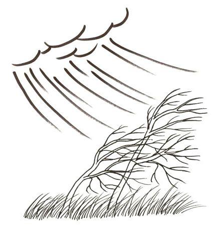 Kova tuuli