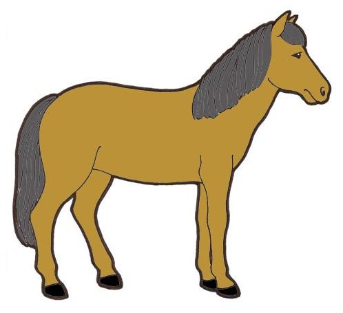 Hevonen Piirretty