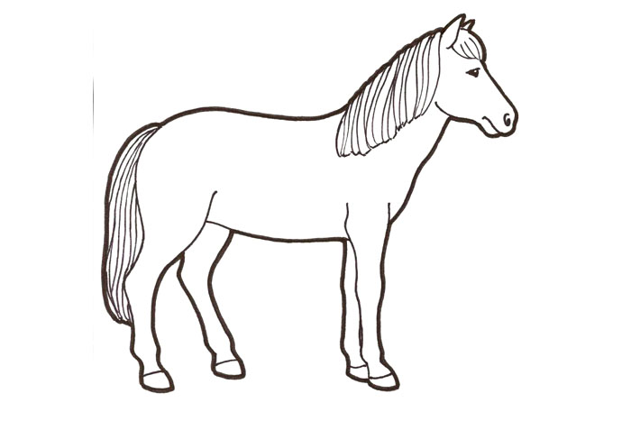 hevonen kuva rintsikka tampere