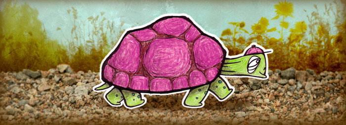 Jänis ja kilpikonna j