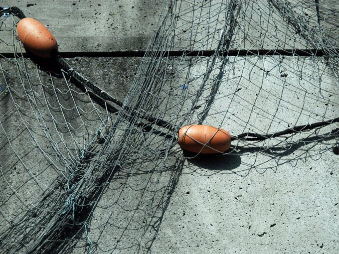 Kalastusverkko