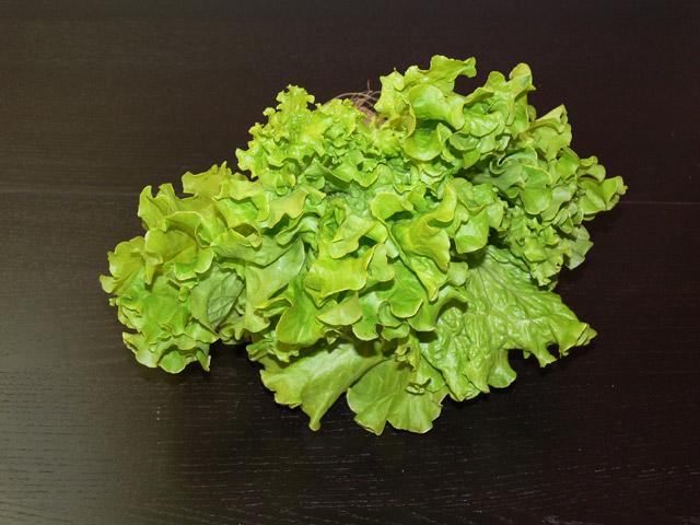Lehtisalaatti