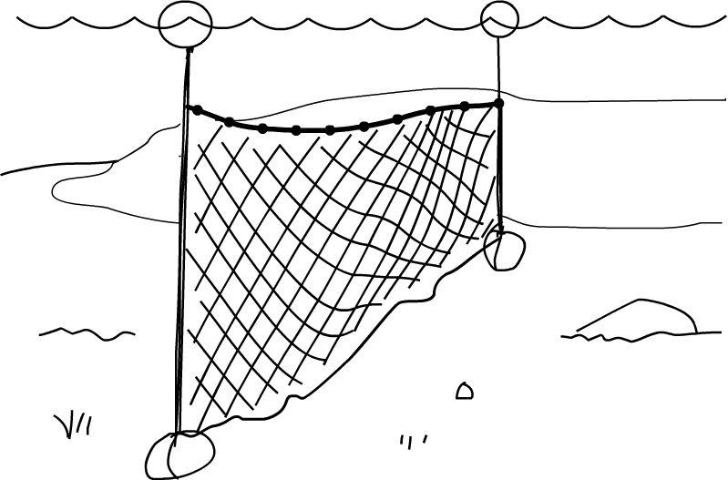 Verkkokalastus