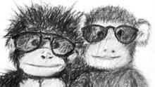 Apinat aurinkolasit päässä.